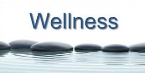 mentor wellness