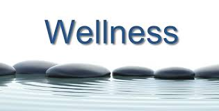 mentor wellness